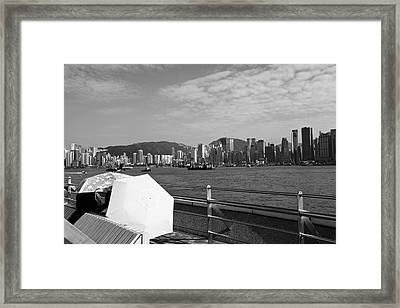 Enjoying The Sun Framed Print by Richard WAN