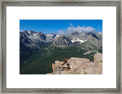 Framed Print featuring the photograph Enjoying The View by Tyson and Kathy Smith