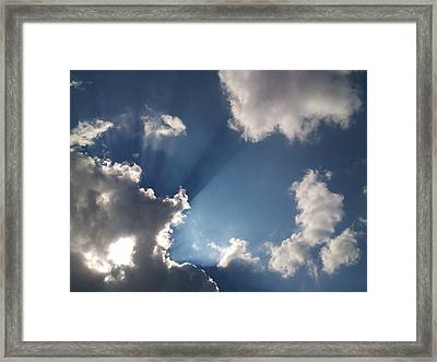 Enlightenment  Framed Print by Lucy D