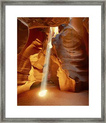 Enlightenment Framed Print by Timm Chapman