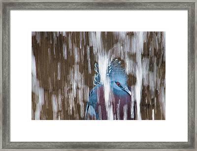 Ennui Framed Print by Tracy Munson