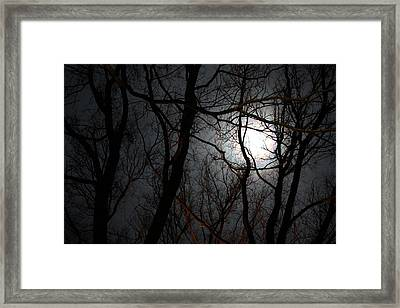 Entangled In The Moonlight Framed Print by Judy Powell