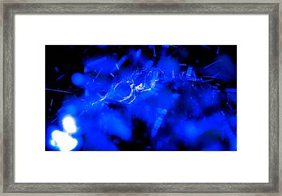 Entangled Framed Print by Philip Zion