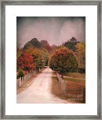 Enter Fall Framed Print by Jai Johnson