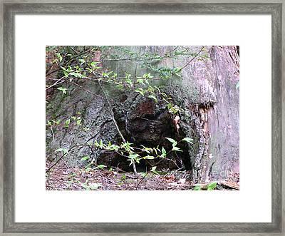 Enter Framed Print by Melissa Stoudt