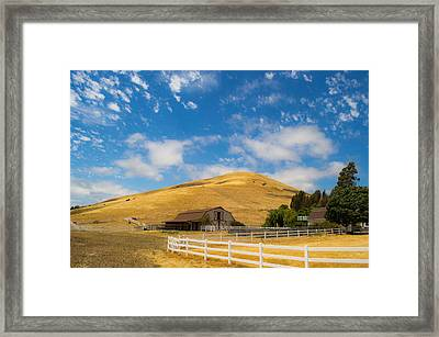 Entering The Napa Valley Framed Print by Rima Biswas