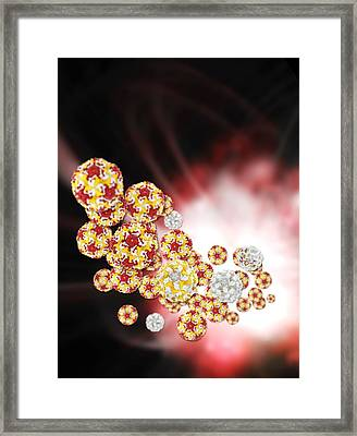 Enterovirus Particles Framed Print by Science Photo Library