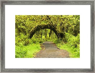 Entrance Framed Print by Kyle Wasielewski