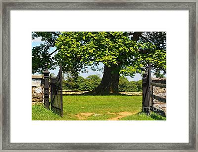 Entrance To Antietam's Mumma Cemetery Framed Print by Patti Whitten