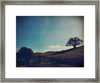 Entrances Framed Print by Laurie Search