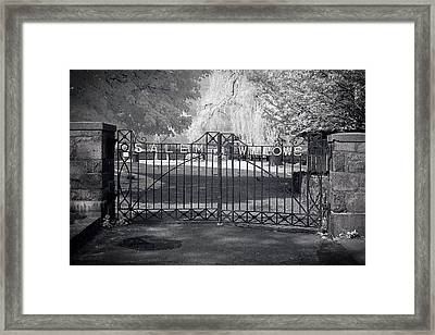 Entry To Salem Willows Framed Print