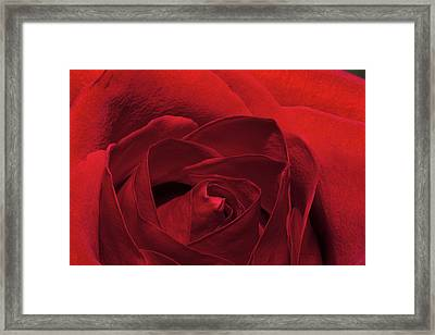 Enveloped In Red Framed Print
