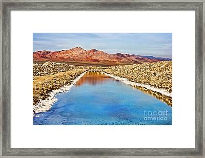 Environmental Disaster Beauty By Diana Sainz Framed Print by Diana Sainz