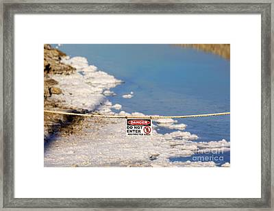 Environmental Disaster By Diana Sainz Framed Print by Diana Sainz