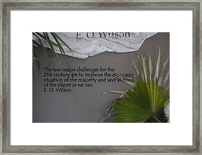 E.o. Wilson Quote Framed Print