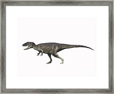 Eocarcharia Dinops, Early Cretaceous Framed Print by Nobumichi Tamura