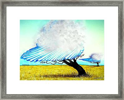 Ephemeral And Brief Framed Print by Paulo Zerbato