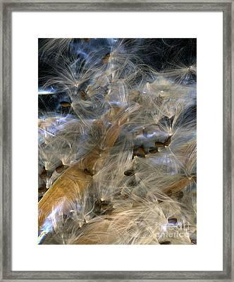 Ephemeral Framed Print by Dale Hoopingarner