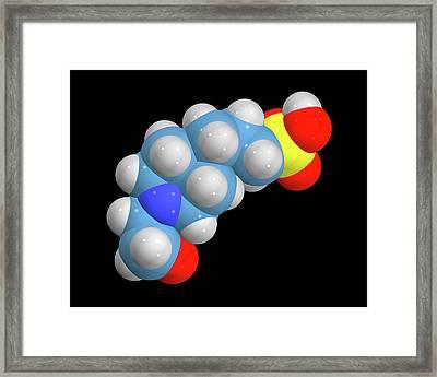 Epps Molecule Framed Print by Dr Tim Evans