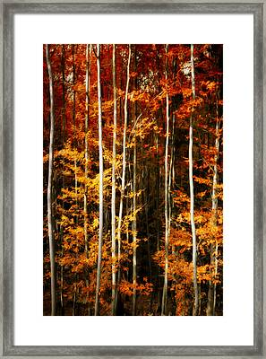 Framed Print featuring the photograph Equilibre by Philippe Sainte-Laudy