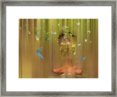 Equilibrium 2 Framed Print by Andre Pillay