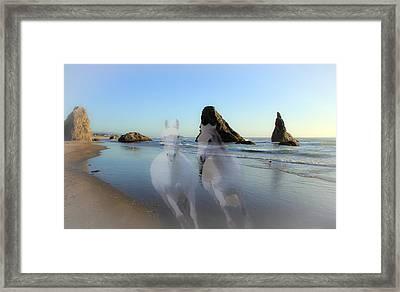 Equine Beach II Framed Print