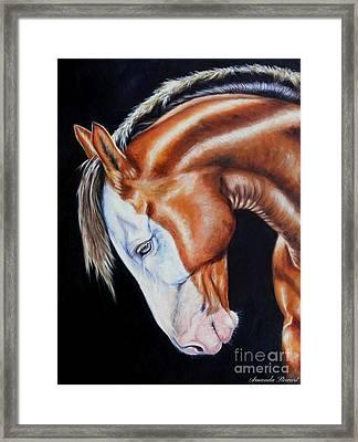 Equine Elegance Framed Print by Amanda Hukill