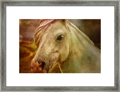 Equine Fantasy Framed Print by EricaMaxine  Price