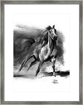 Framed Print featuring the drawing Equine II by Paul Davenport