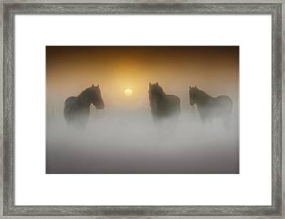 Equine Magic Framed Print