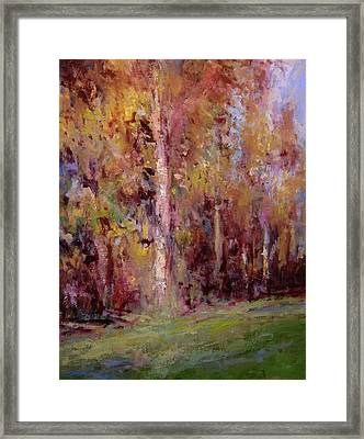 Equinox Framed Print by R W Goetting