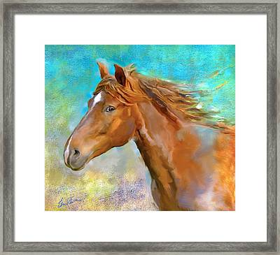 Equus 1 Framed Print