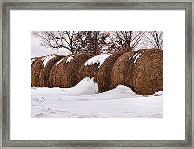 Erickson Road Hay Bales Framed Print