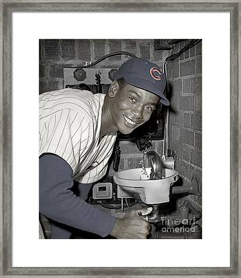 Ernie Banks At Cubs Water Fountain Framed Print