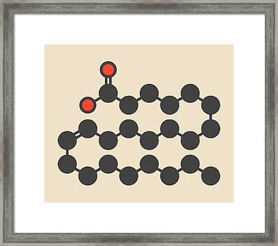 Erucic Acid Molecule Framed Print