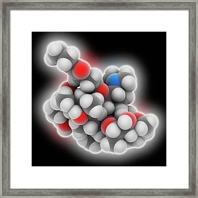 Erythromycin Ethylsuccinate Drug Molecule Framed Print by Laguna Design