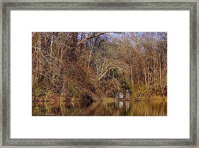 Escape From Reality  Framed Print by Debra Forand