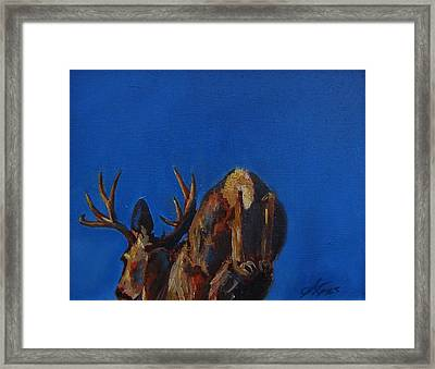 Escape Framed Print by Suzanne Tynes