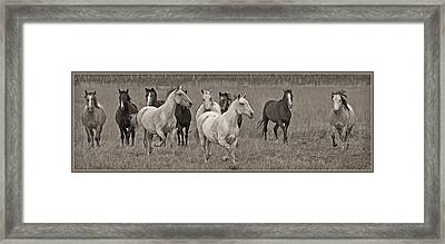 Escapees From A Lineup D8056 Framed Print by Wes and Dotty Weber