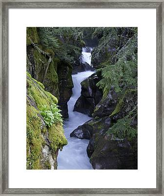 Escaping  Framed Print by SEA Art