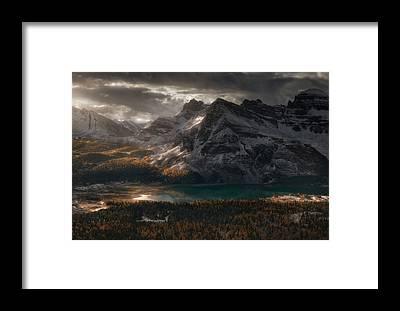 Alberta Framed Prints