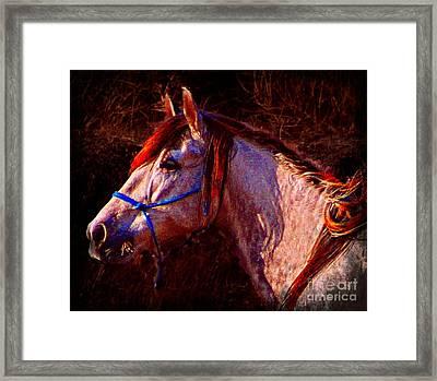 Espirite Libre Framed Print