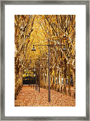 Esplanade Des Quinconces Park Framed Print by Panoramic Images