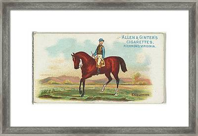 Esquimau, From The Worlds Racers Series Framed Print by Issued by Allen & Ginter