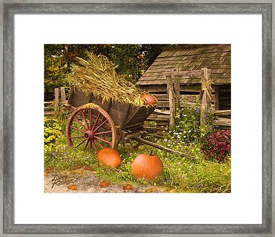 Essence Of Autumn  Framed Print