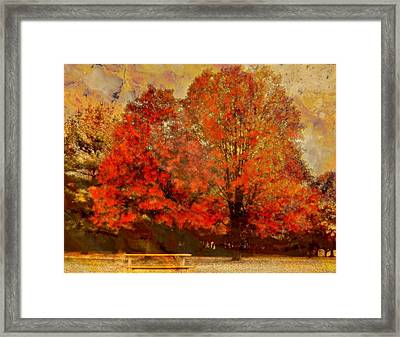 Essence Of  Fall  Framed Print by Rick Todaro
