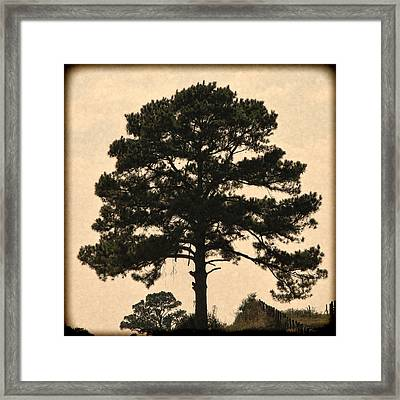 Essential Pause Framed Print by Wendy J St Christopher
