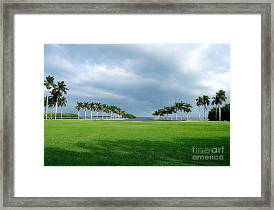 Estate Lawn Framed Print by Andres LaBrada