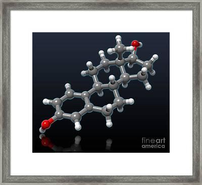 Estradiol Molecular Model Framed Print by Evan Oto