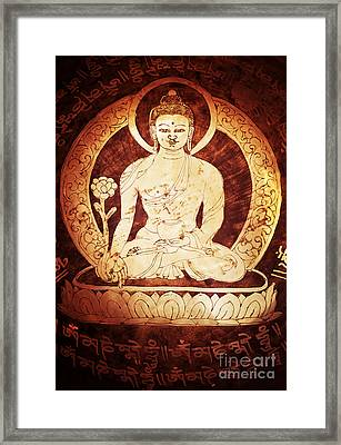 Etched Buddha  Framed Print by Tim Gainey